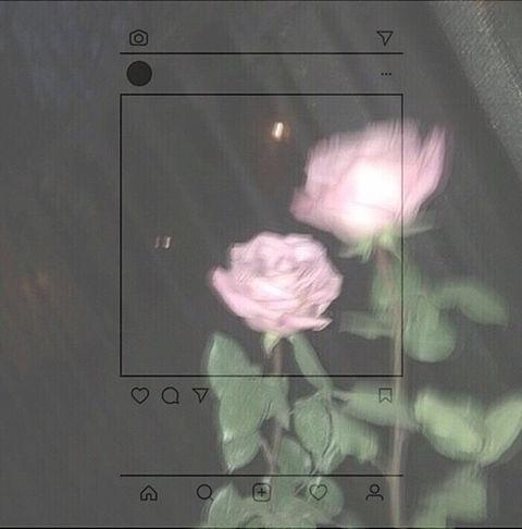 インスタ風の画像 プリ画像