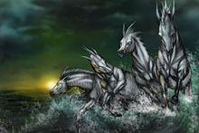馬の画像(Photoshopに関連した画像)