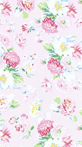 かわいい壁紙 花 プリ画像