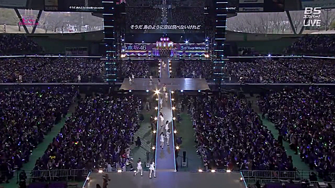 乃木坂46 コンサートの画像(プリ画像)