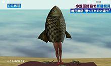 ナマ足魅惑のマーメイド♪の画像(プリ画像)
