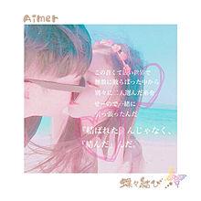 Aimer/蝶々結び