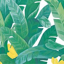 バナナリーフ プリ画像