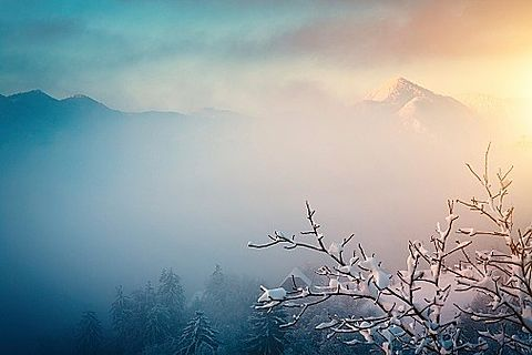冬の終わりの画像(プリ画像)