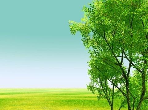 緑の画像(プリ画像)