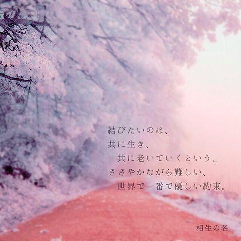 キミノ名ヲ。 相生の名の画像(プリ画像)