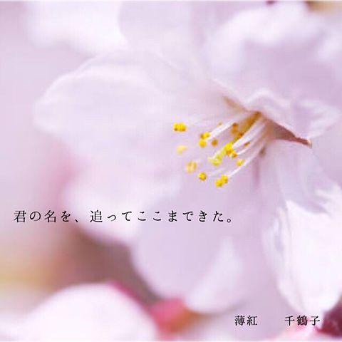 キミノ名ヲ。 千鶴子の画像(プリ画像)