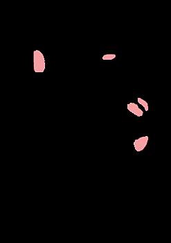 stampの画像(プリ画像)