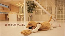 石井萌々果 東宝ホーム CMの画像(プリ画像)