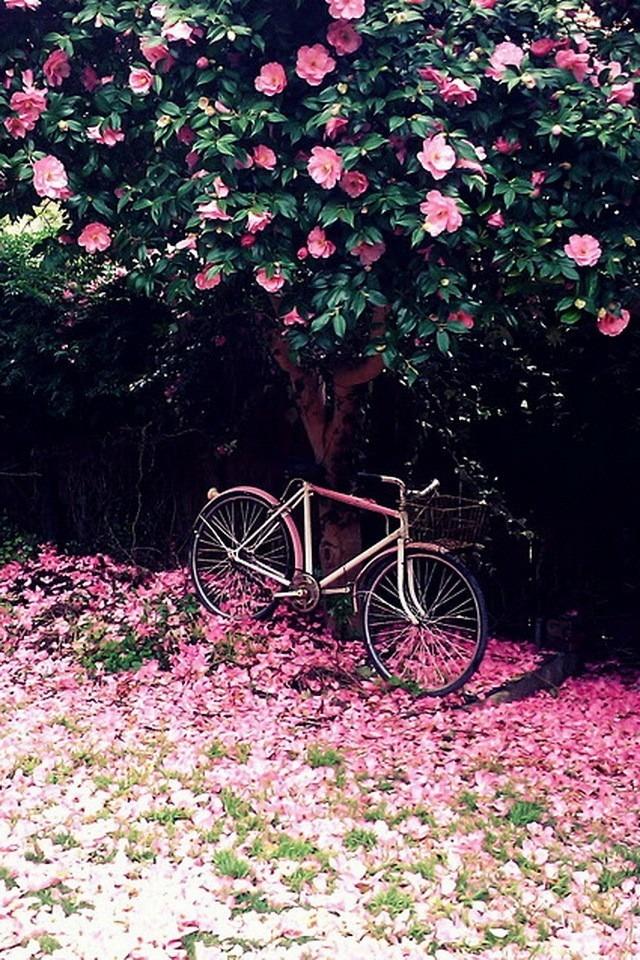 素材 自転車 可愛い パステルの ...