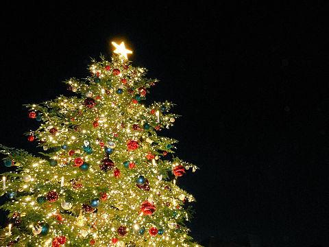 クリスマスツリーの画像(プリ画像)