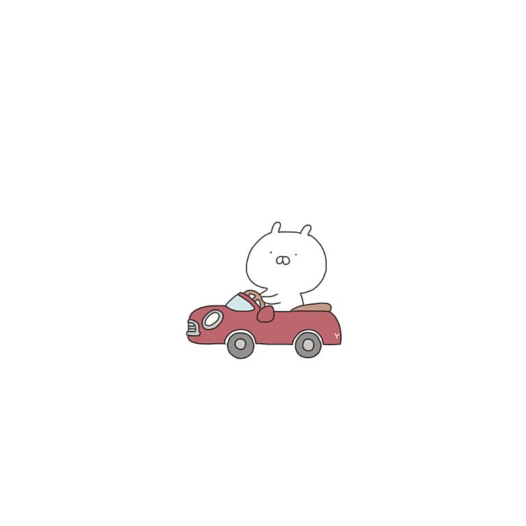車に乗っているうさまるです。