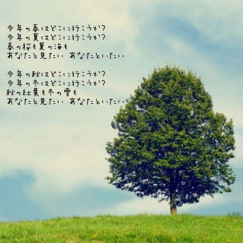 春夏秋冬 歌詞[32318917]   完全 ...