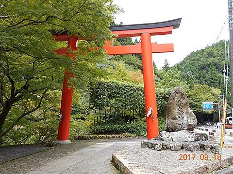 ⛩修学旅行 京都🚅の画像 プリ画像