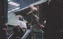 the Hobbit Peter Jackson Orlando Bloomの画像(bloomに関連した画像)