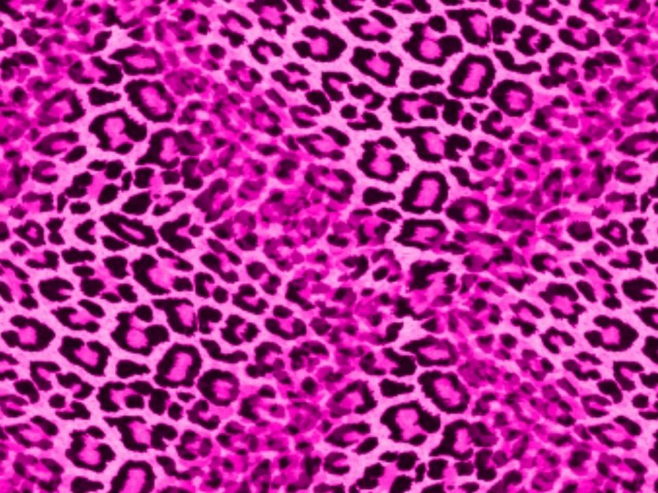 Neon Pink Leopard Print Wallpaper