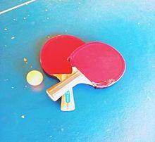 卓球青春しよー!の画像(卓球 かわいいに関連した画像)