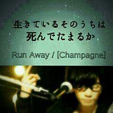 [champagne] プリ画像