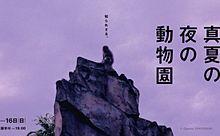 ハスの花咲くビアガーデンも!上野で「真夏の夜の動物園」が開催の画像(ビアガーデンに関連した画像)