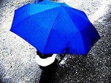 ユニーク&キュートな梅雨ネイル♪【傘モチーフ】でメイクする最旬な指先の画像(梅雨ネイルに関連した画像)