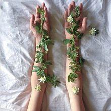 """トレンドは指先に落としこむ!大人の花柄ネイルなら""""ボタニカル柄""""を選びたい。の画像(ボタニカル柄に関連した画像)"""