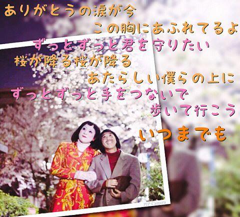 桜 ファンモン 歌詞画像の画像(プリ画像)