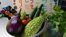 夏野菜の画像(家庭に関連した画像)