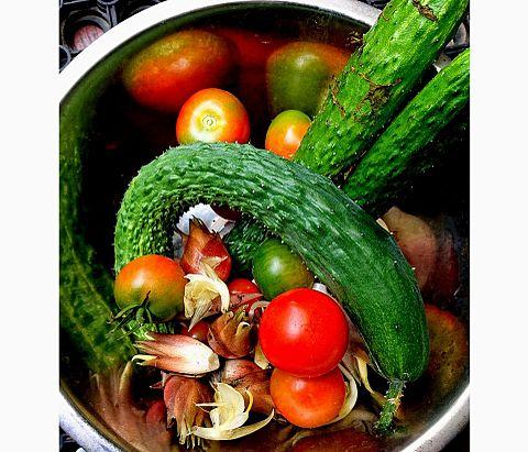 今日の収穫の画像(プリ画像)