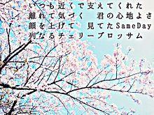 ヲタバレ防止。歌詞画像。の画像(ヲタバレ防止に関連した画像)