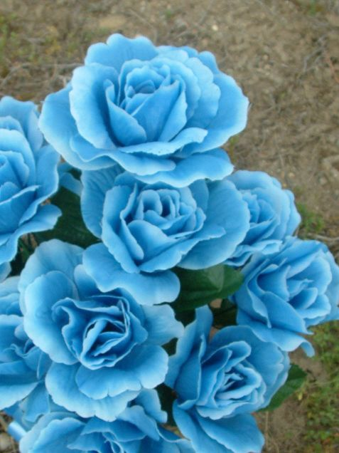Blue roseの画像(プリ画像)
