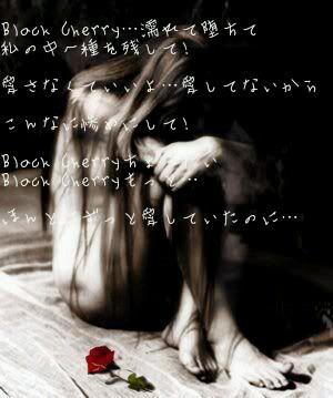 Black Cherry 歌詞