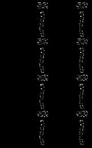 キンブレシート レースの画像(キンブレシートに関連した画像)