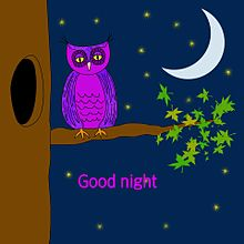 Good night*フクロウ (説明文 必読)の画像(プリ画像)