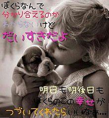 子犬の画像(プリ画像)