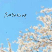春になってもの画像(春になってもに関連した画像)