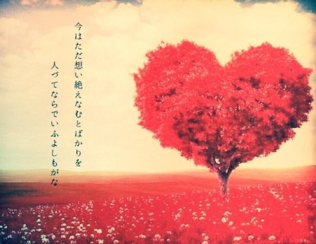 恋愛和歌 この想いを、あなたに…の画像 プリ画像 私はもう、あなたのことを諦めます。 あなたのこ
