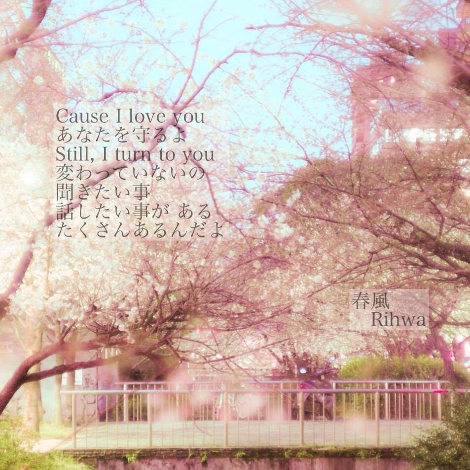 春風 Rihwaの画像 プリ画像 春風 Rihwa [31545287] | 完全無料画像検索の