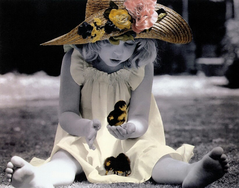 花と小鳥と少女のモノクロ・白黒写真の壁紙