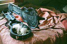 ○→加工して再配布 ×→原画のまま再配布の画像(猫 おしゃれに関連した画像)