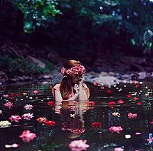 △.素材の画像(レトロ 壁紙 花に関連した画像)