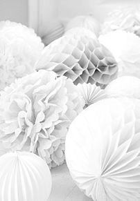 △.素材の画像(白/ホワイトに関連した画像)