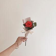△.素材の画像(薔薇に関連した画像)