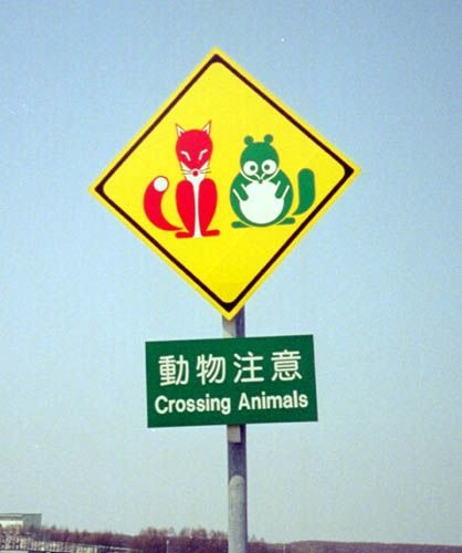 赤いキツネと緑のタヌキ