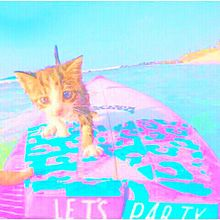 no titleの画像(猫 おしゃれに関連した画像)