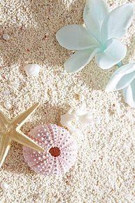 海 in Beach プリ画像