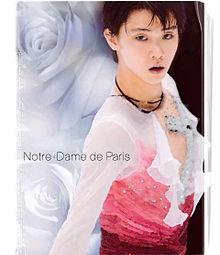 Notre-Dame de Parisの画像(プリ画像)