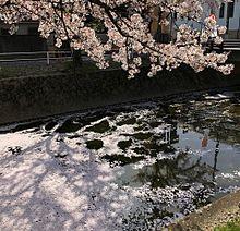 風景写真 坂本まり ★の画像(愛知県に関連した画像)