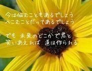 歌詞 ファイトソング not ヲタバレ 愛優☆の画像(嵐 notヲタバレに関連した画像)