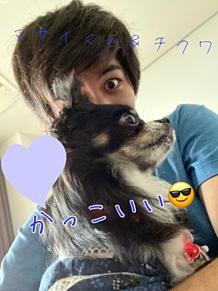マサイくん&チクワ💖 ~Twitterより~ プリ画像