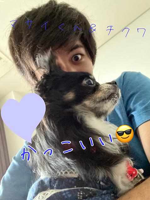 マサイくん&チクワ💖 ~Twitterより~の画像(プリ画像)